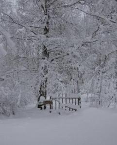 Grinden ner mot sjön i vinterskrud